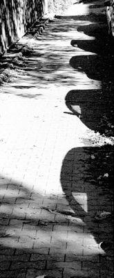 Schattenkarawane