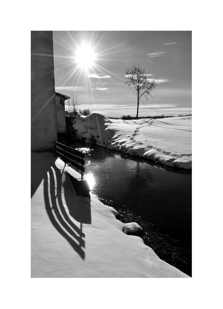 Schattenschwung im Winterlicht