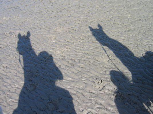 Schattensiele am Strand