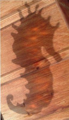 Schattenspiel auf Holz
