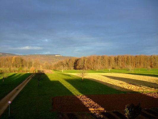 Schattenwurf an einem frühen Wintermorgen