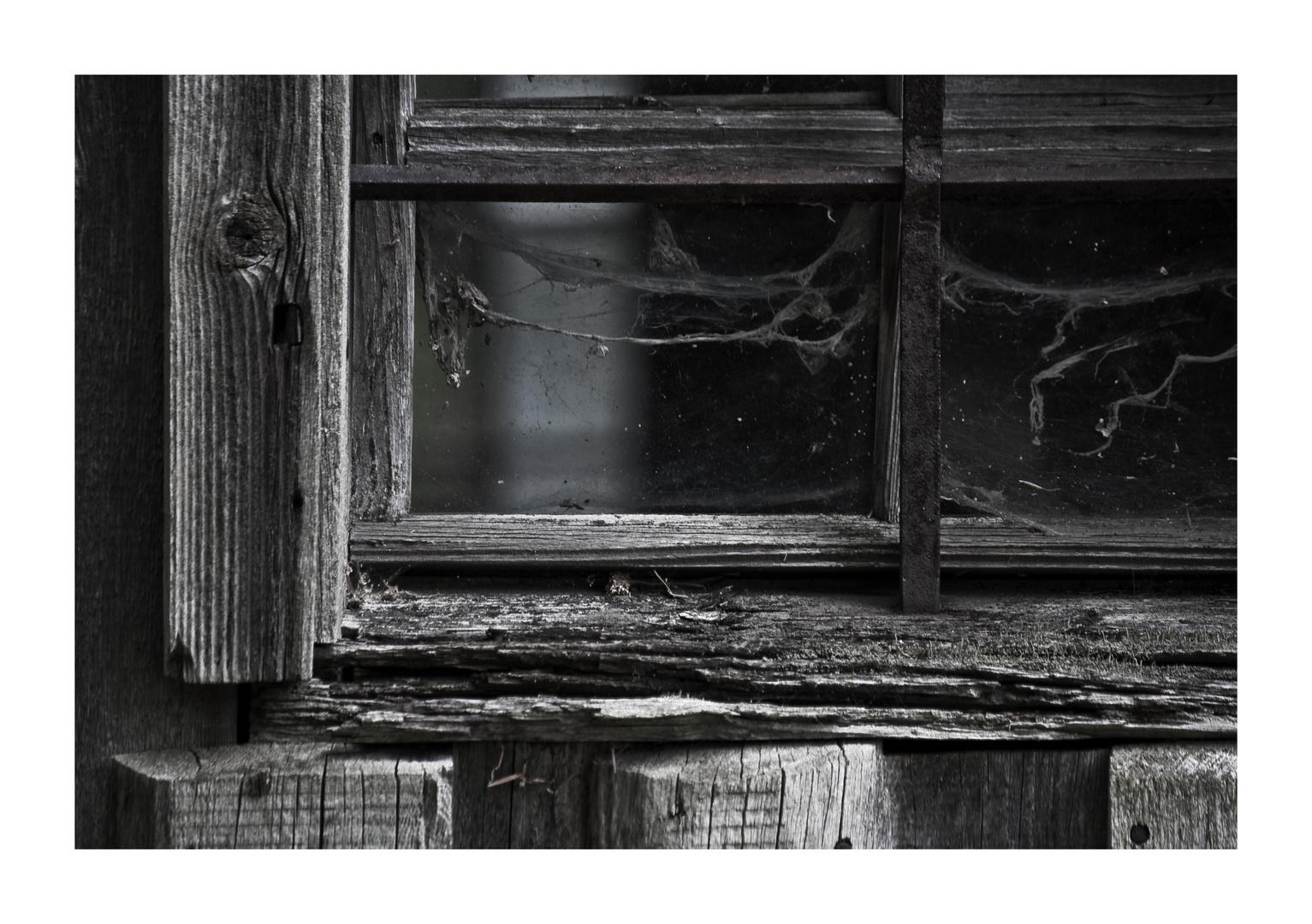 Schatz, Du könntest mal wieder das Fenster putzen!