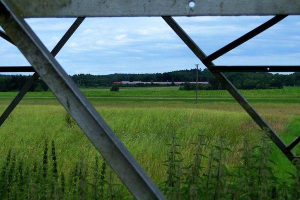 Schau-Ins-Land [Steelview]