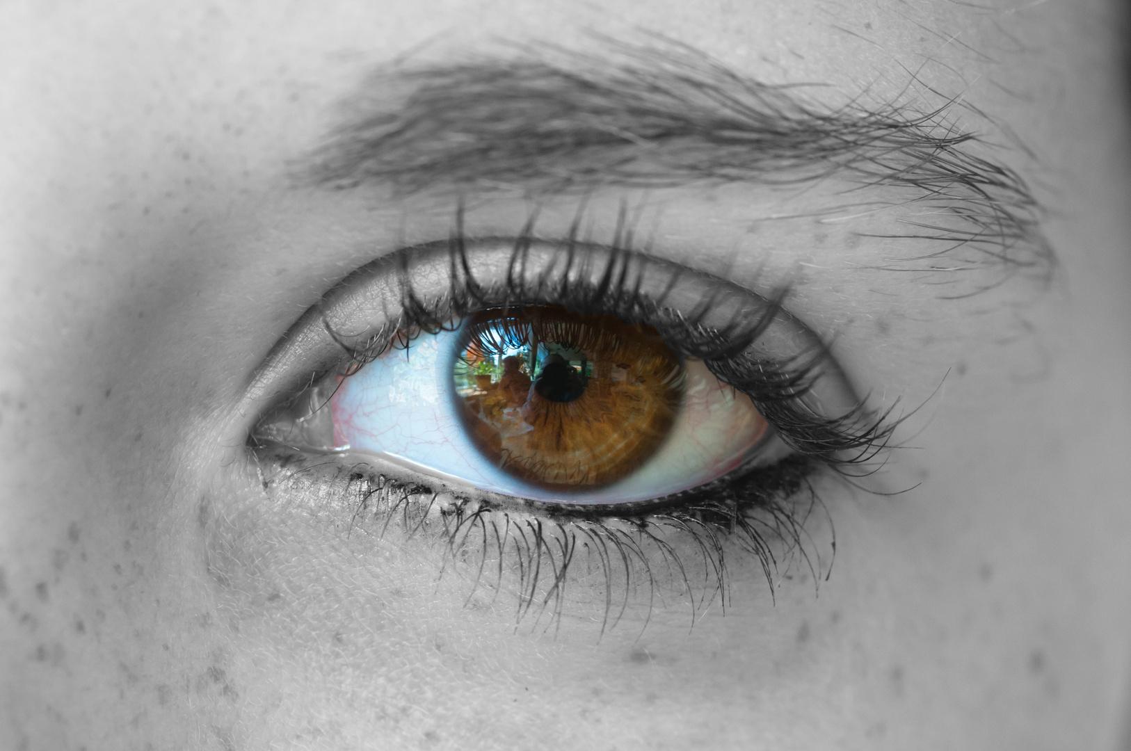 Schau mir in die Augen...........