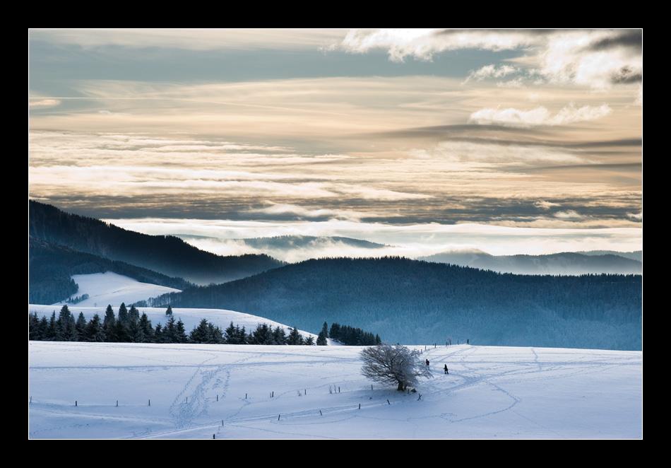 Schauinsland / Südschwarzwald