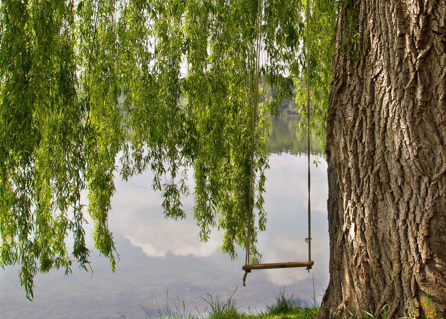 Schaukel am See
