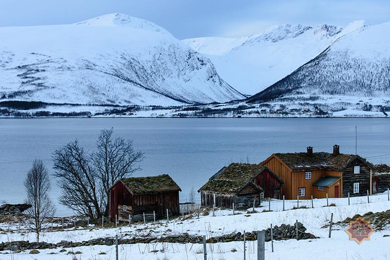 Schaurige Schönheit des Nordens