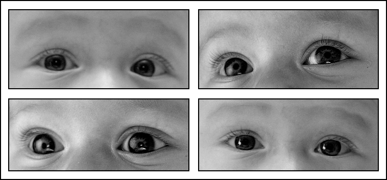 Schaut uns in die Augen!