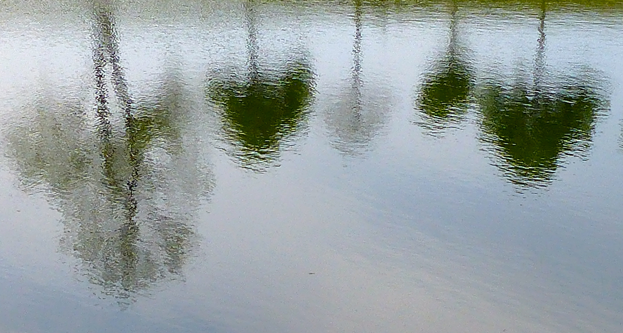 Schein-Sein: Es gibt viele interessante Spiegel-Schein-Welten