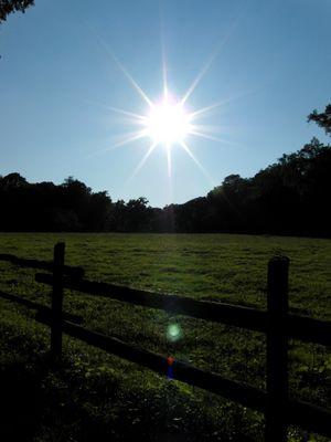 scheinende Sonne