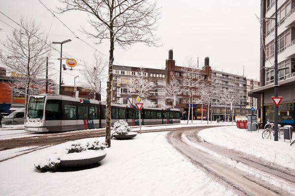 Schiedam - Koemarkt