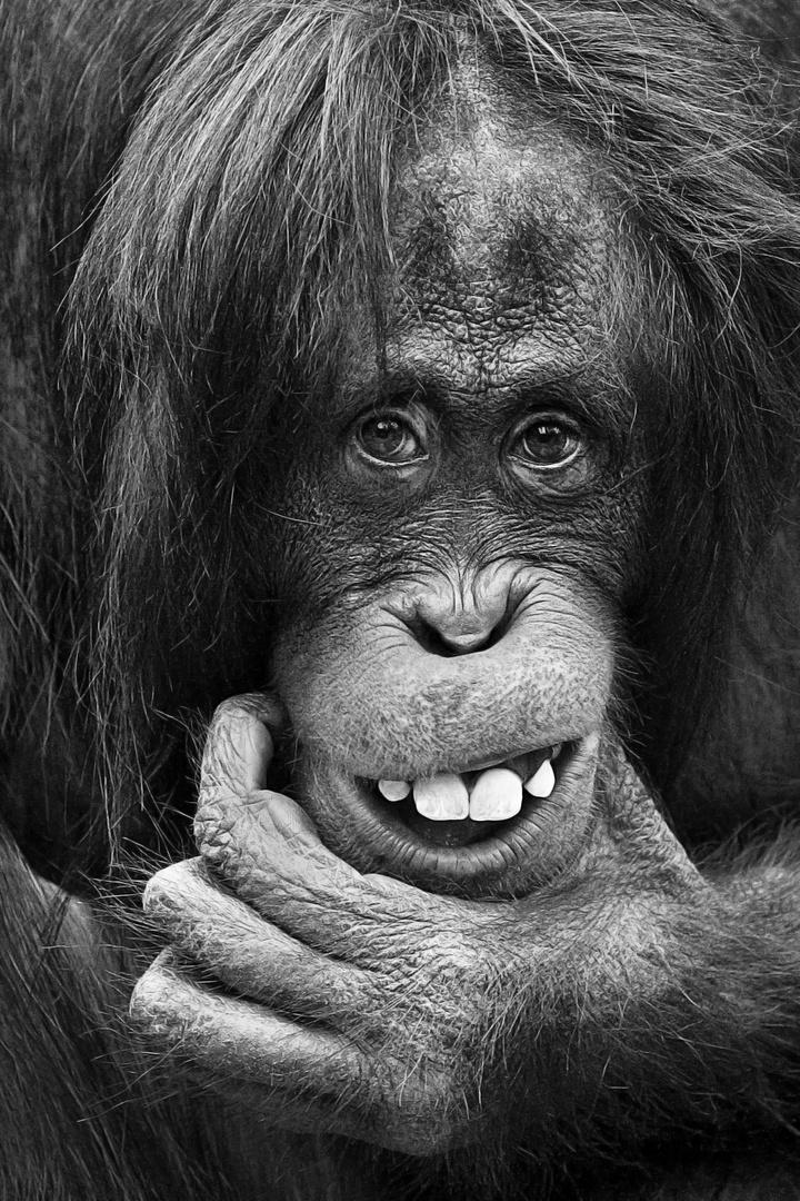 Schiefes Lächeln