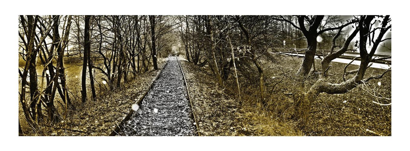 Schienen auf dem Land