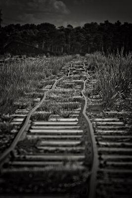 Schienenführung