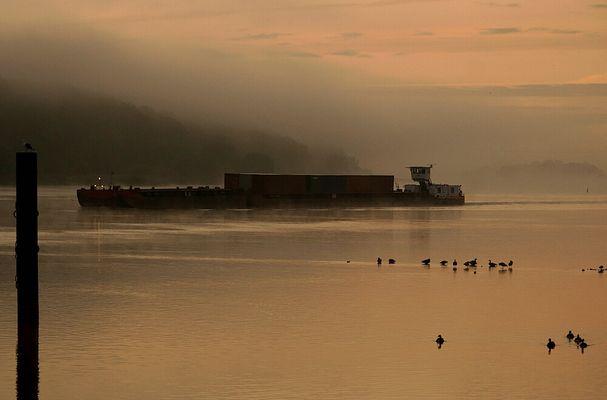 Schiffsverkehr im Morgennebel