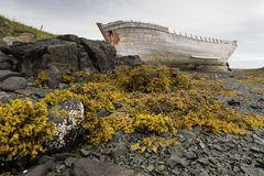 Schiffswrack auf Flatey