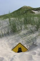 Schild im Sand