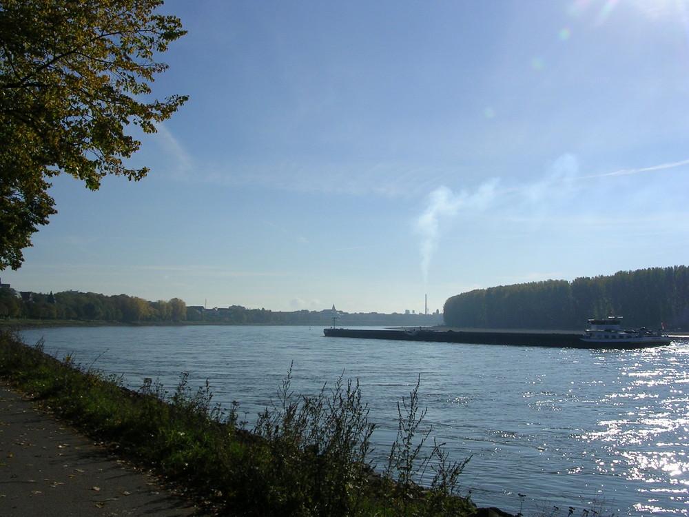 Schippern auf dem Rhein