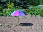 Schirm für eine Tomate