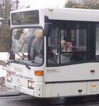 Schiwy...und der Bus kommt!