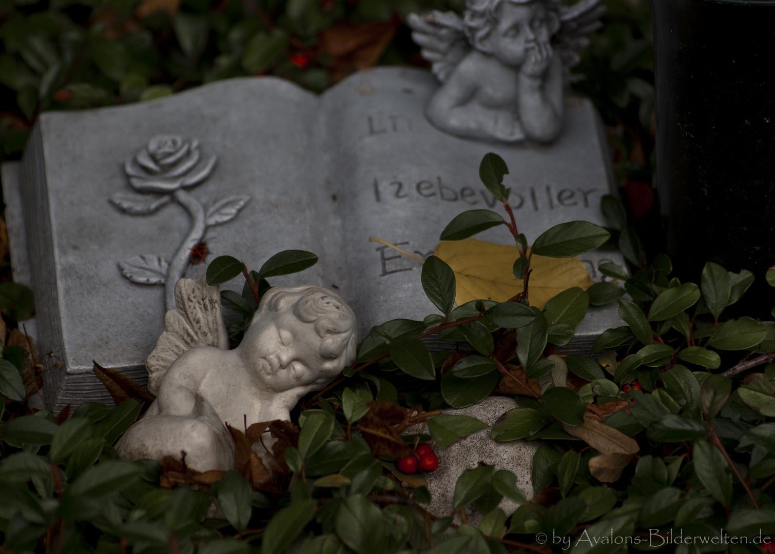 Schlafe sanft, kleiner Engel..... Hauptfriedhof Dortmund II