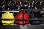 Schland-Schirme