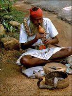Schlangenbeschwörer in Sri Lanka