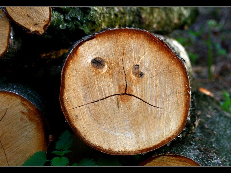 Schlechte Baum-Stimmung
