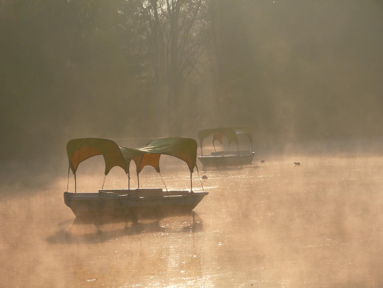 Schleier am Boot
