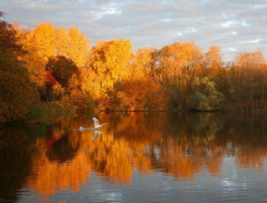 Schleswig- Holsteins Herbst
