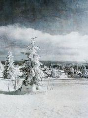 Schliffkopf - Winter
