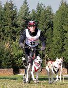 Schlittenhunderennen Reingers (2011) Part 4