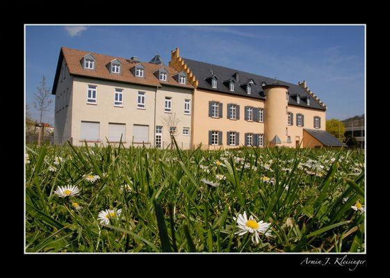Schloss-Ardeck, Gau-Algesheim