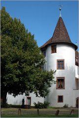 ... Schloss Binningen an der Birsig ...