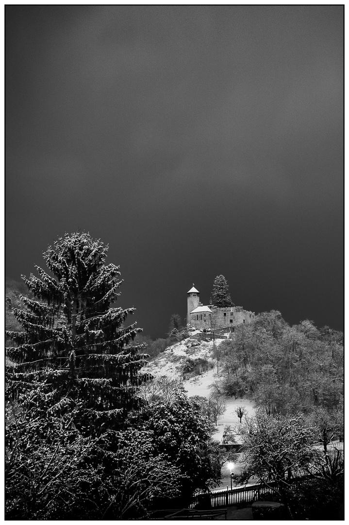 Schloss Birseck #1