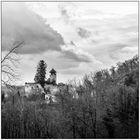 Schloss Birseck #3