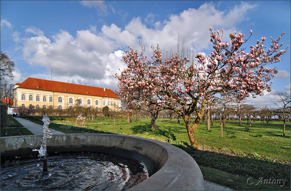 Schloß Dachau