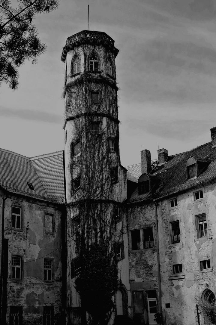 Schloss Droyssig
