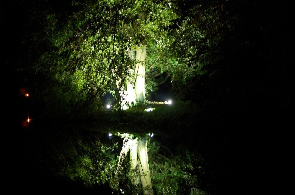Schloss Dyck - nachts