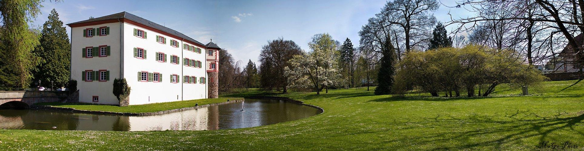 Schloss Eichtersheim 2