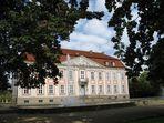 - Schloss Friedrichsfelde - von Bäumen umrankt