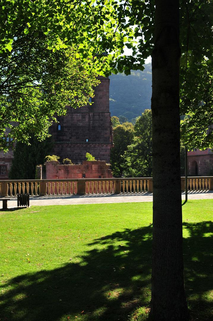 Schloss Heidelberg 6