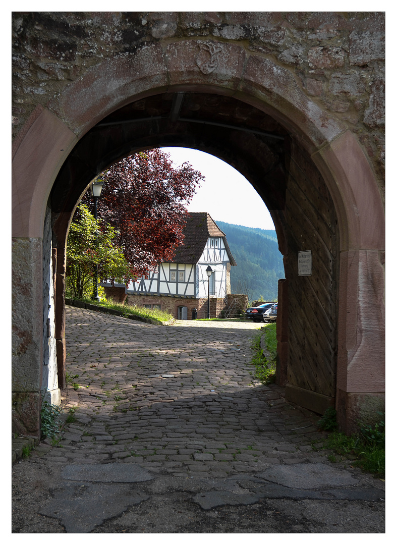 Schloss Hirschhhorn