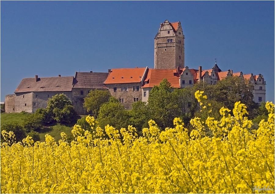 Schloss im Mai
