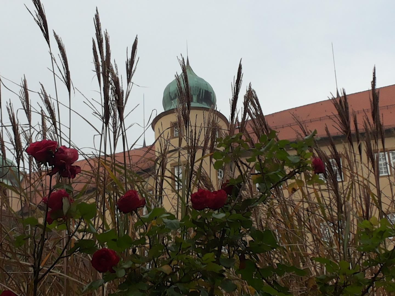 Schloss Kapfenburg 2