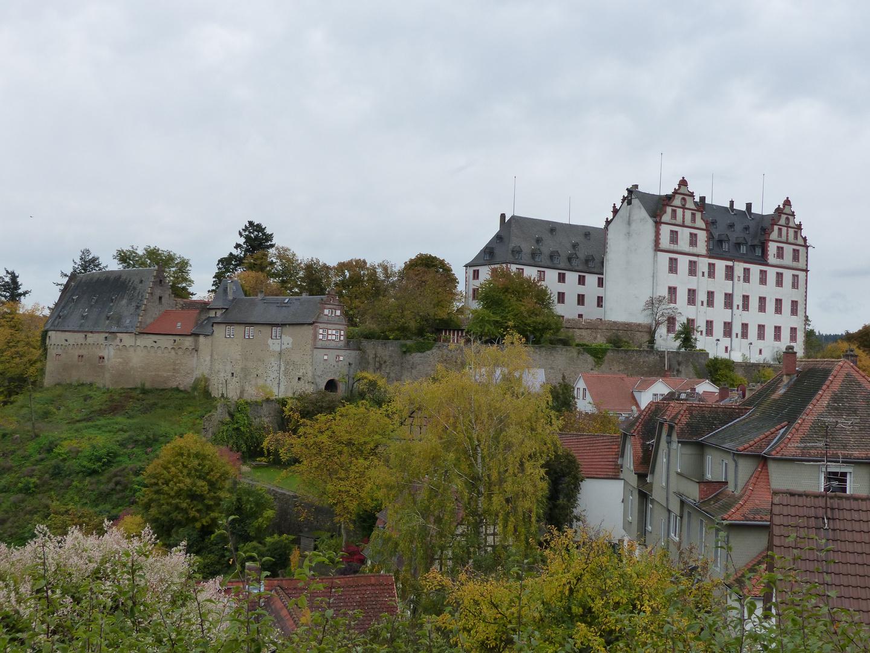 Schloss Lichtenberg (Fischbachtal)
