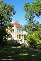 Schloss Luisium (Sommerversion)