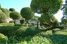 Schloss Marquessac - Buchsbaumgarten von Ingeborg K