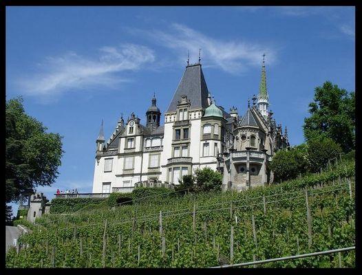 Schloss Meggenhorn mit Weinberge