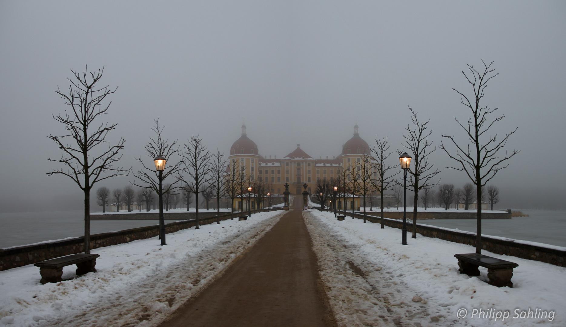 Schloss Moritzburg im Nebel